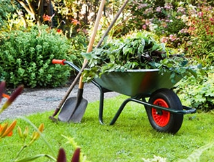 Landscaping Clean Up Tips